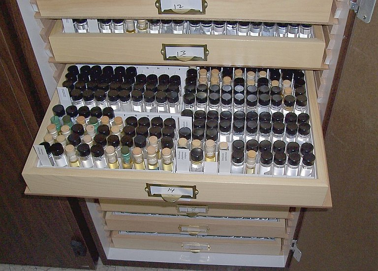 Black flies are permanently housed in the Simuliid Section of the Clemson University Arthropod Collection, which includes one of the world's largest collections of black flies.